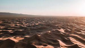 Desert Mongolia 3